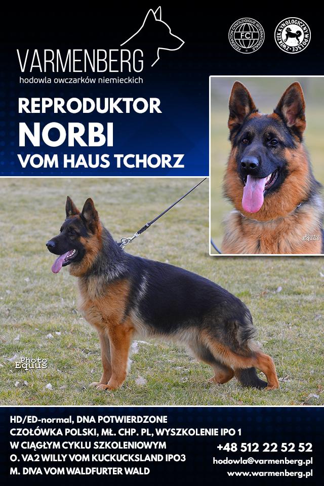 reproduktor Norbi Vom Haus Tchorz