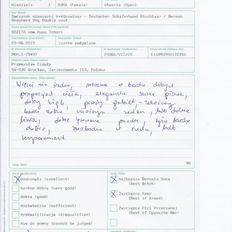 owczarek 1_Page_4